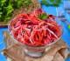 Фитнес-салат «Щетка» со свеклой, капустой и морковью
